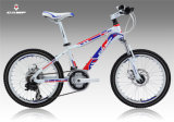 Sales chaud Children Bike/Alloy Bicycle en stock (XC160)