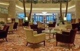 De Stoel en de Lijst van de Reeksen van het Meubilair van het Restaurant van het hotel/het Dineren/de Stoel van het Banket en Lijst (jnct-002)