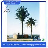 Одной трубки скрытых Palm Tree Телекоммуникационная башня