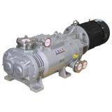 Bomba de vacío de tornillo seco usada para procesos de productos químicos farmacéuticos