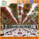 Restaurante ecológico de invernadero ecológico hecho en China con alta calidad