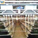para la jaula del pollo de la colocación de huevo de la batería de la granja avícola de la capa para la venta
