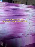Schermi standard dell'insetto del pieghettato dell'Iran e schermi pieghettati dell'insetto del merletto del filato