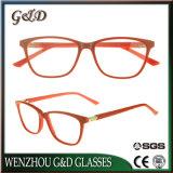 Acetato de alta qualidade estoque grossista isopropanol óculos vidros ópticos Frame