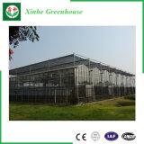 Casa verde de cristal inteligente de la modernización con de múltiples funciones