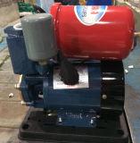 Pompe à eau domestique automatique de Wedo Gp130 pour l'usage 0.25kw/0.3HP de ménage