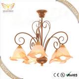 Dekorative Leuchte des heißen Verkaufs-2014