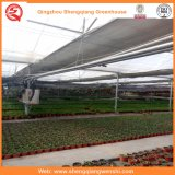 Venlo Typ Polycarbonat-grüne Häuser für das Pflanzen