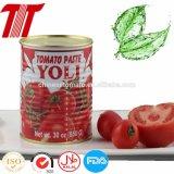 Geschmackvolles Tom-Marken-Tomatenkonzentrat des sauren Aromas