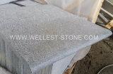 Piscina facente un passo delle mattonelle del granito di Wellest G654 del pavimento non tappezzato della scala grigia scura naturale del lastricatore che pavimenta mattonelle