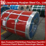 SGCC Prepainted Hoja de acero galvanizado en bobinas PPGI