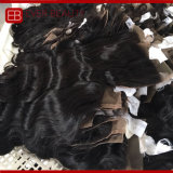 Cor Natural Virgem Brasileira Hair Lace Cabelo Fecho tecem