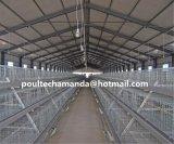 Het Systeem van de Kooi van de Braadkip voor het Landbouwbedrijf van de Kip voor Verkoop (een Frame van het Type)