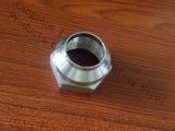 Raccordo per tubi in acciaio inox DIN2999 con nipplo in fusione