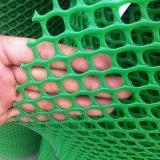 [توب قوليتي] يسعّر شبكة بلاستيكيّة مسطّحة/على أحسن وجه شبكة بلاستيكيّة مسطّحة/شبكة بلاستيكيّة مسطّحة