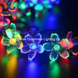 Standard a forma di chiaro dell'Ue dell'indicatore luminoso della stringa di RGB Sakura dell'indicatore luminoso di natale del LED (AC220V)