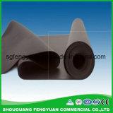 トンネルEPDMのための防水の膜