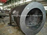 Carbonio e pezzo fucinato dell'acciaio legato