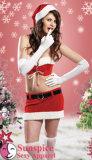 Lencería sexy sexy / desgaste de la Navidad (SD-03)