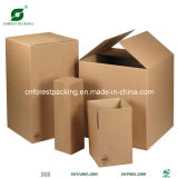 Двойные стенки коробки из гофрированного картона (FP5060)
