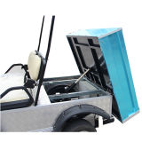 2 Seater Jagd-Buggy mit hinterem Ladung-Kasten u. Dach