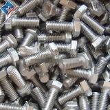 Bullone dell'acciaio inossidabile con la noce Hex e la rondella
