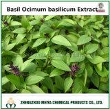 Santos Basílio Ocimum basilicum extrato de pó com ácido Ursolic