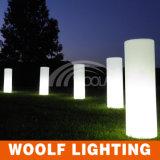 결혼식 또는 당 또는 사건 훈장을%s LED 기둥 또는 란