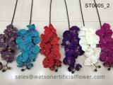 Синий Орхидея в Тяньцзине Уотсон подарки Co Ltd