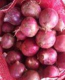 Лук нового урожая красный с хорошим качеством