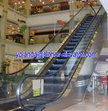 Nagelneues Escalator Made in China
