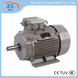 55kw 380V de alta fiabilidad Motor AC trifásica