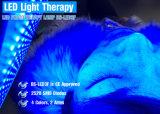 3개의 색깔 LED 적외선 Phototherapy 기계 및 장치