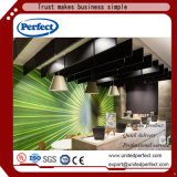Plafond acoustique de vente de fibre de verre chaude de noir