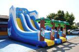 Водные горки цены гигантские надувные, 40 ноги слайд, сдвиньте развлечений