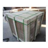 中国の工場からの安い塗られた芝地のステープル