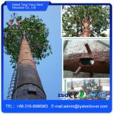 電流を通された鋼鉄自己サポートのカムフラージュの木Monopoleタワー
