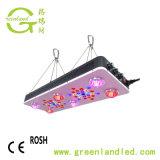 900W de alta calidad Ce RoHS Amplio espectro de luz LED regulable de la planta crecer