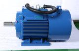 Langlebiges Gut Using erstklassige Leistungsfähigkeit 3 Serie des Phasen-Elektromotor-Jvf2