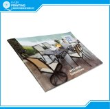 Impresión a todo color del folleto del bajo costo de la grapa