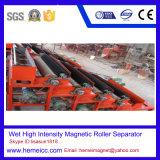 De verticale Magnetische Separator van de Gradiënt van de Ring Pulserende Hoge voor Wolframiet -2