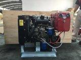 De aangepaste Dieselmotor van de Cilinder van de Kleur LD Enige