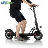 Ecorider E4-6 Electric Kick scooter moto con asiento