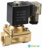 Válvula solenóide de alta qualidade com CE / RoHS (2W)