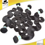 Необработанные Virgin Реми бразильский волос (ШСС-BH)