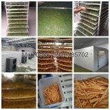 Fruits de mer de vente/dessiccateur chaud économiseur d'énergie de poissons/viande/machine de séchage/déshydrateur