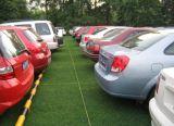 Grünes Gras-Straßenbetoniermaschinen für Parkplatz