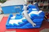 De Opblaasbare Droge Dia van de dolfijn voor Verkoop Chsl569