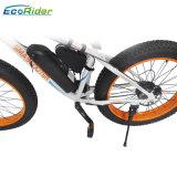 Elektrisches Fahrrad-Fahrrad mit Legierungs-Rahmen