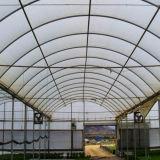 판매를 위한 플레스틱 필름 상업적인 식물성 온실